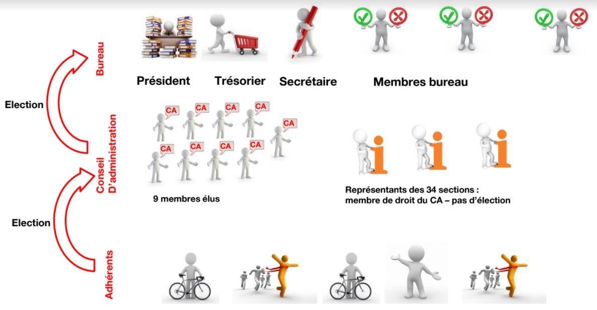 Organisation vsc 2